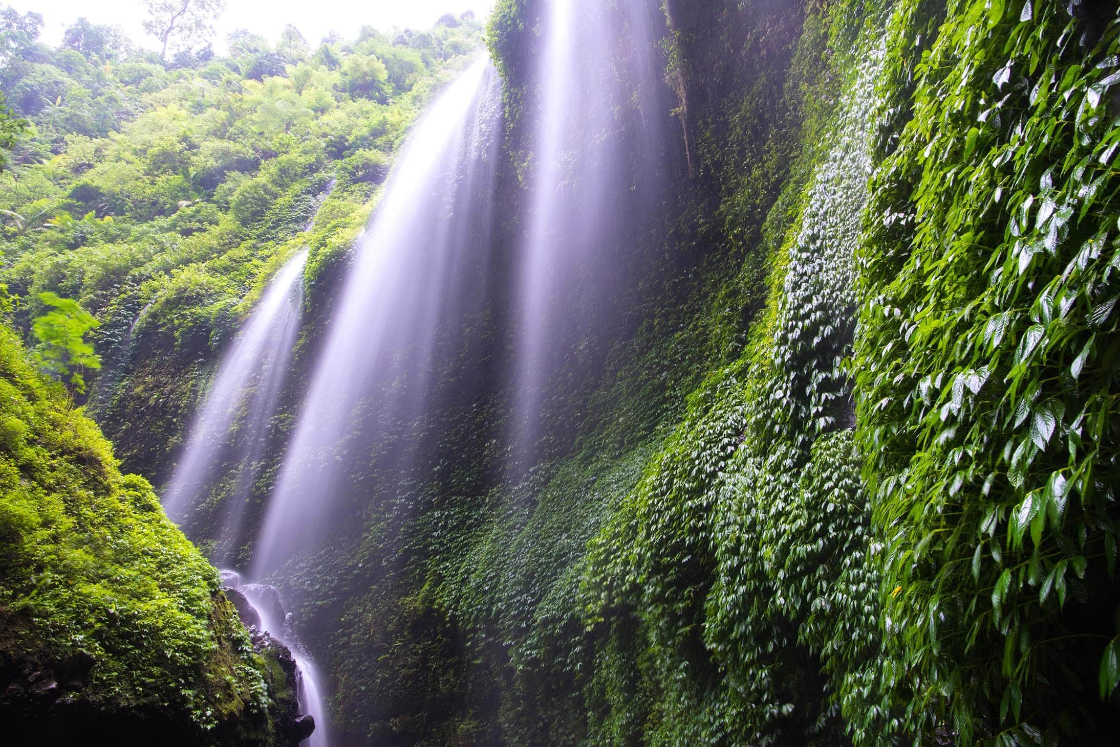 madakaripura waterfall bromo