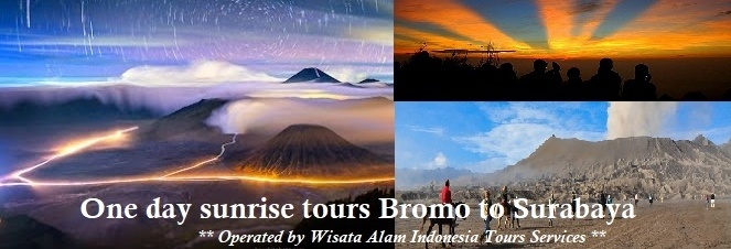 night bromo tours surabaya, one day bromo tours, bromo tours surabaya, bromo sunrise tour
