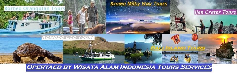 bali island tours, komodo island tours, ijen tours, bromo tours, java tours, orangutan tours, borneo orangutan tours