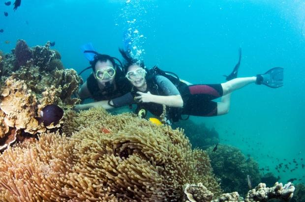 bangsring snorkeling trip, bangsring beach banyuwangi, pantai bangsring, bangsring snorkeling tour, banyuwangi snorkeling trip