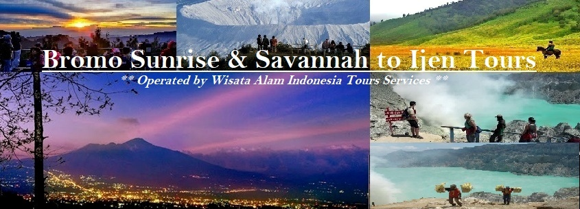 bromo sunrise savanna and ijen tours