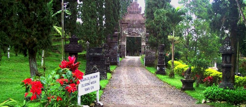 banyuwangi plantation tours
