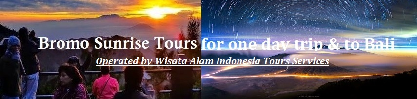 night bromo sunrise, bromo tours one day, one day trip bromo, 1 day bromo tours