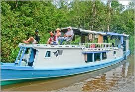boat orangutan tours borneo
