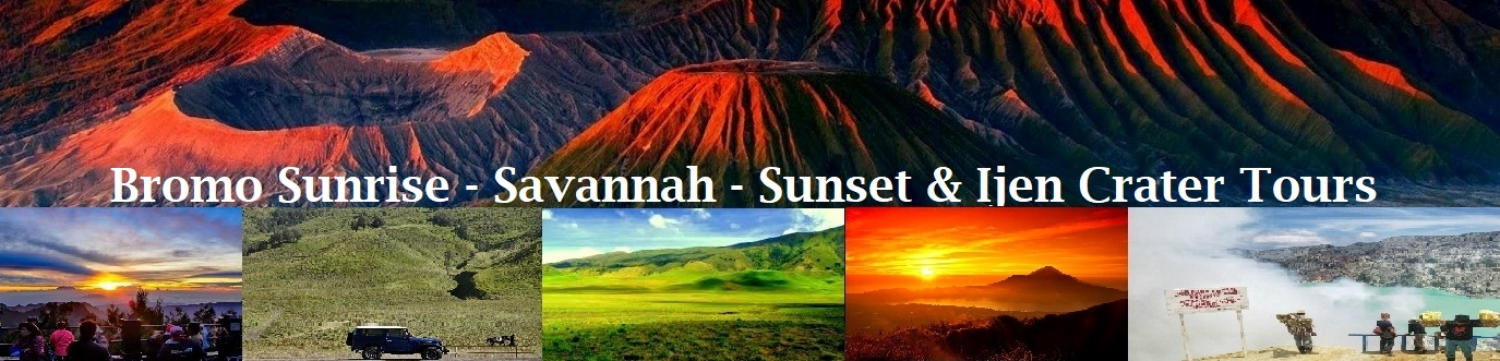 bromo sunrise tours, bromo savannah tours, bromo sunset tours, ijen tours, ijen crater tour, ijen tours banyuwangi