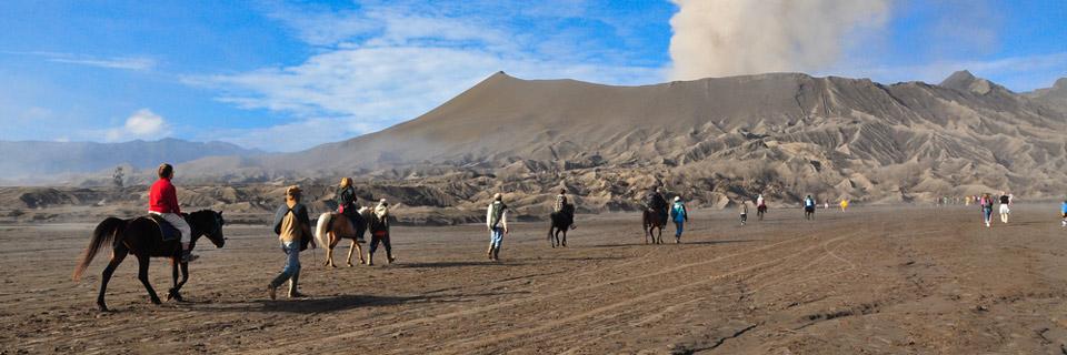 bromo tours horse riding