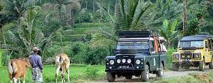 jeep ijen tours banyuwangi java