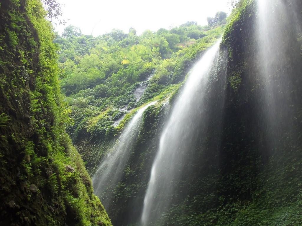 bromo tours madakaripura waterfall