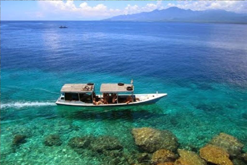menjangan island snorkeling, snorkeling tours menjangan island, menjangan island boat, menjangan island tours