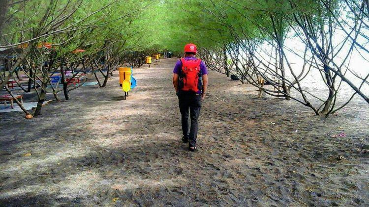 pantai cemara banyuwangi tours
