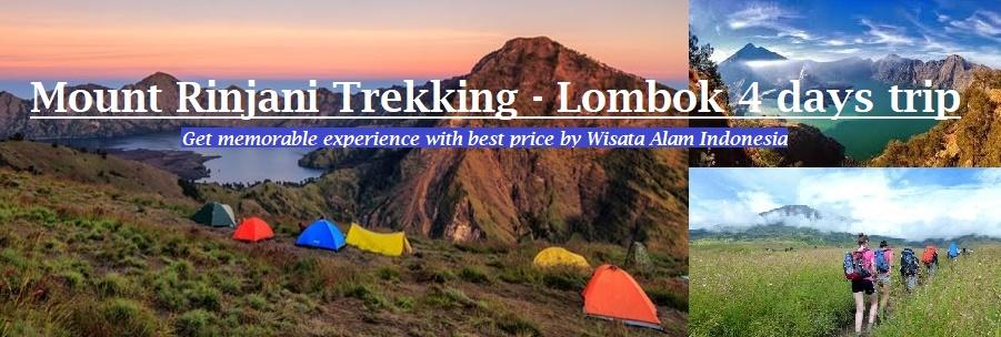 mount rinjani trekking, rinjani trekking, lombok trekking, lombok tour, adventure lombok tour