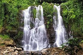 banyuwangi tours to jagir waterfall