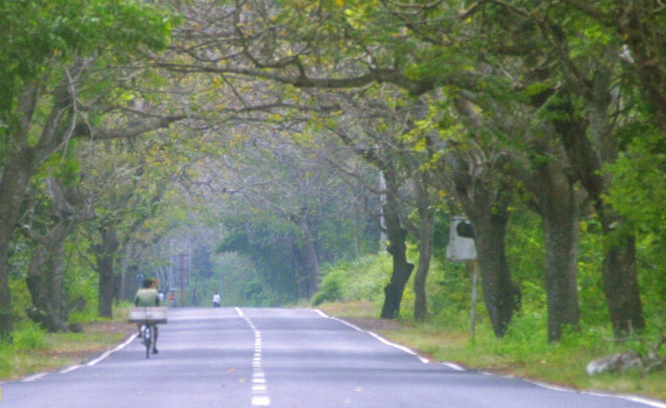 west bali road