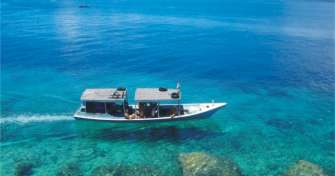 Bali to Menjangan Island Snorkeling Tours & Blue Fire Ijen Tours Banyuwangi then back to Bali