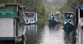 Borneo Orangutan Tours & River Eco Trip by Boat or Klotok in Tanjung Puting National Park for 3 days