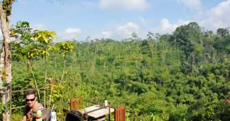 One day trip in Bali Island for Ubud & Kintamani Tours
