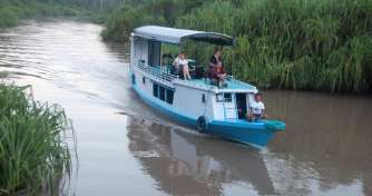 Orangutan Tours Borneo & River Eco Trip by boat or Klotok in Camp Leakey of Tanjung Puting National