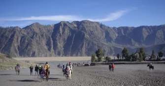 Cheap tour price from Malang or Surabaya to Bromo Tours & Ijen Tours with blue flame tours then to B