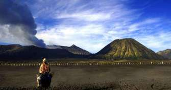 Malang or Surabaya to Bromo for Bromo Sunrise tours & Bromo Savannah tours then back to Surabaya or