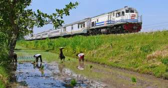Yogya to Surabaya by a train & to Ijen Bromo tours 3D
