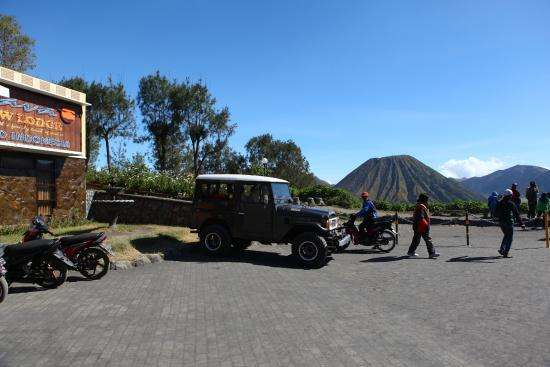 Probolinggo to Bromo Ijen Tours & continue to Bali 3D